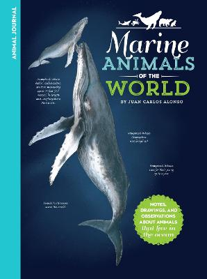 Animal Journal: Marine Animals of the World by Juan Carlos Alonso
