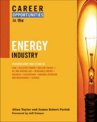 Career Opportunities in the Energy Industry book