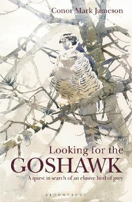 Looking for the Goshawk by Conor Mark Jameson
