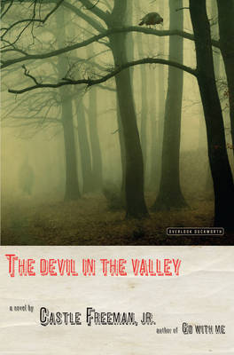 The Devil in the Valley by Castle Freeman