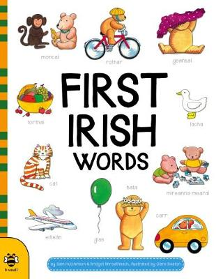 First Irish Words by Sam Hutchinson