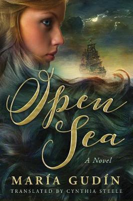 Open Sea by Maria Gudin