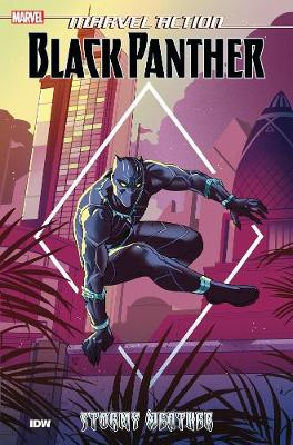 Marvel Action: Black Panther: Stormy Weather by Kyle Baker