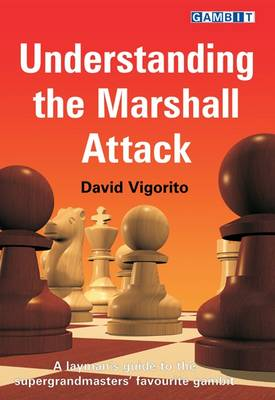 Understanding the Marshall Attack by David Vigorito