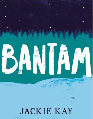 Bantam book