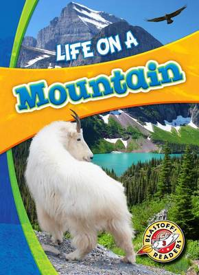 Life on a Mountain by Laura Hamilton Waxman