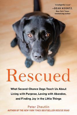 Rescued book