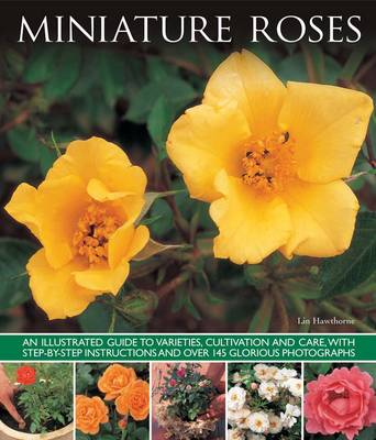 Miniature Roses by Lin Hawthorne