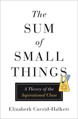The Sum of Small Things: A Theory of the Aspirational Class by Elizabeth Currid-Halkett