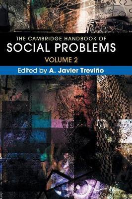 Cambridge Handbook of Social Problems  : Volume 2 book