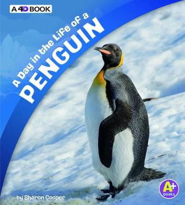 Day in the Life of a Penguin book