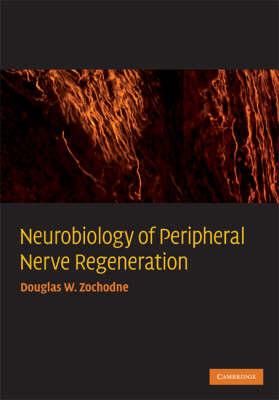 Neurobiology of Peripheral Nerve Regeneration book
