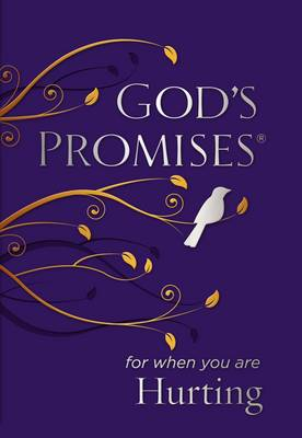God's Promises for When You are Hurting by Jack Countryman