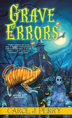 Grave Errors book