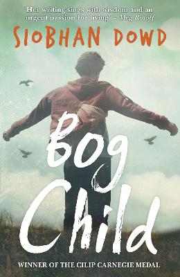 Bog Child book
