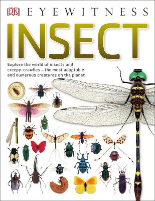 Insect by DK