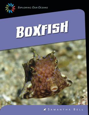 Boxfish by Samantha Bell