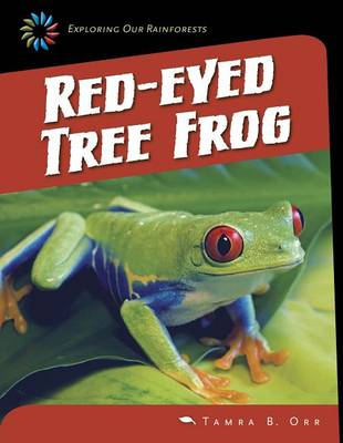 Red-Eyed Tree Frog by Orr Tamra B