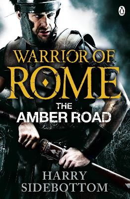 Warrior of Rome VI: The Amber Road book