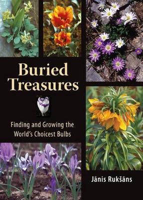 Buried Treasures by Janis Ruksans