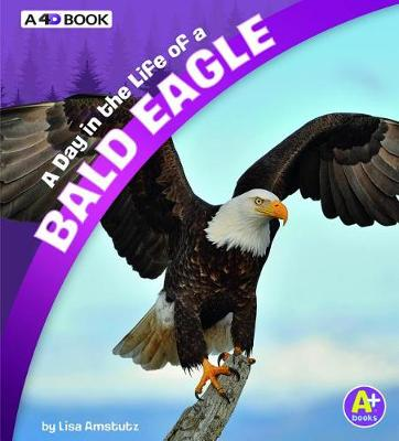A Day in the Life of a Bald Eagle by Lisa J. Amstutz
