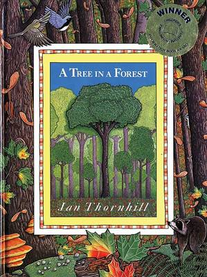 A Tree in the Forest by Jan Thornhill