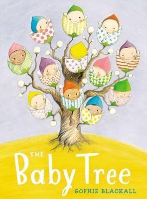 Baby Tree by Sophie Blackall