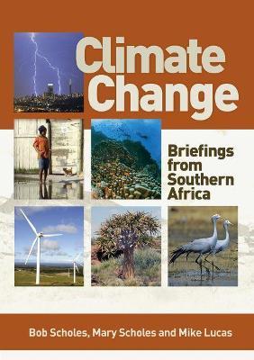 Climate change by Bob Scholes