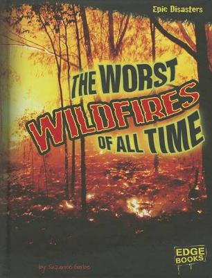 Worst Wildfires of All Time by Suzanne Garbe