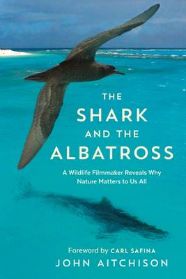 The Shark and the Albatross by John Aitchison
