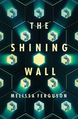 The Shining Wall by Melissa Ferguson