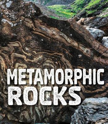 Metamorphic Rocks book