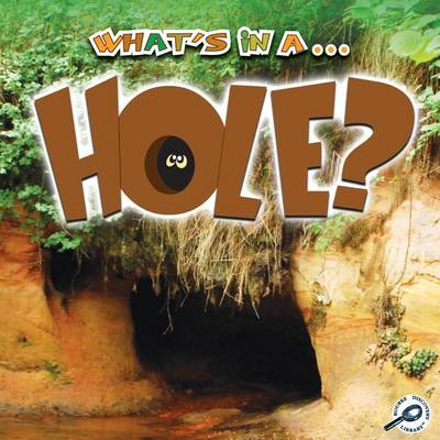 What's in a... Hole? by Tracy Nelson Maurer