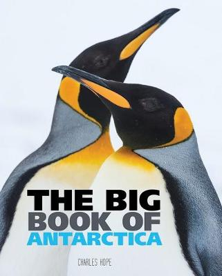 Big Book of Antarctica by Wild Dog Books