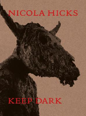 Nicola Hicks: Keep Dark book