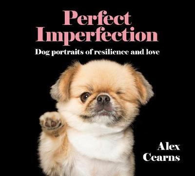 Perfect Imperfection by Alex Cearns