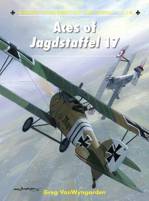Aces of Jagdstaffel 17 by Greg VanWyngarden
