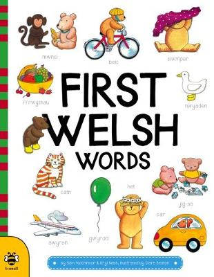 First Welsh Words book