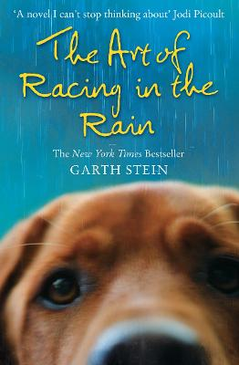 Art of Racing in the Rain book