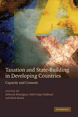 Taxation and State-Building in Developing Countries book