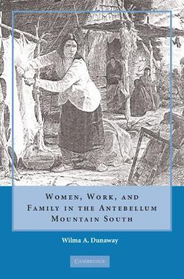 Women, Work and Family in the Antebellum Mountain South book