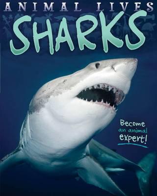 Animal Lives: Sharks by Sally Morgan