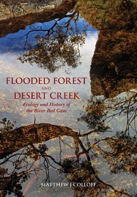 Flooded Forest and Desert Creek by Matthew J. Collof