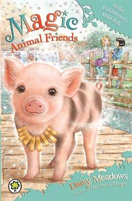 Magic Animal Friends: Millie Picklesnout's Wild Ride by Daisy Meadows