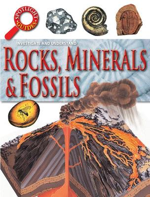 Rocks & Fossils by Neil Curtis
