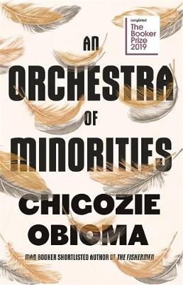 An Orchestra of Minorities book