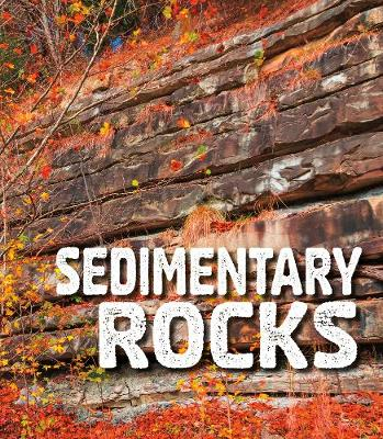 Sedimentary Rocks by Ava Sawyer