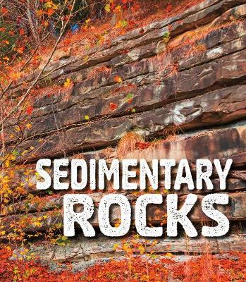 Sedimentary Rocks book