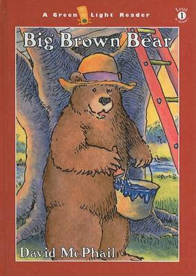 Big Brown Bear by David M McPhail
