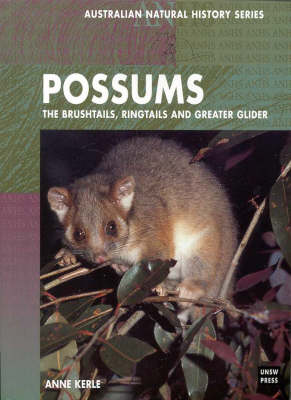 Possums by Anne Kerle